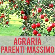AGRARIA PARENTI MASSIMO